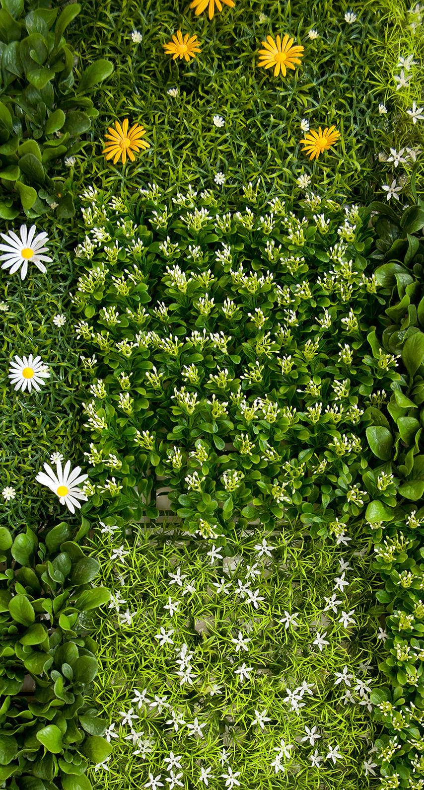 flora, garden
