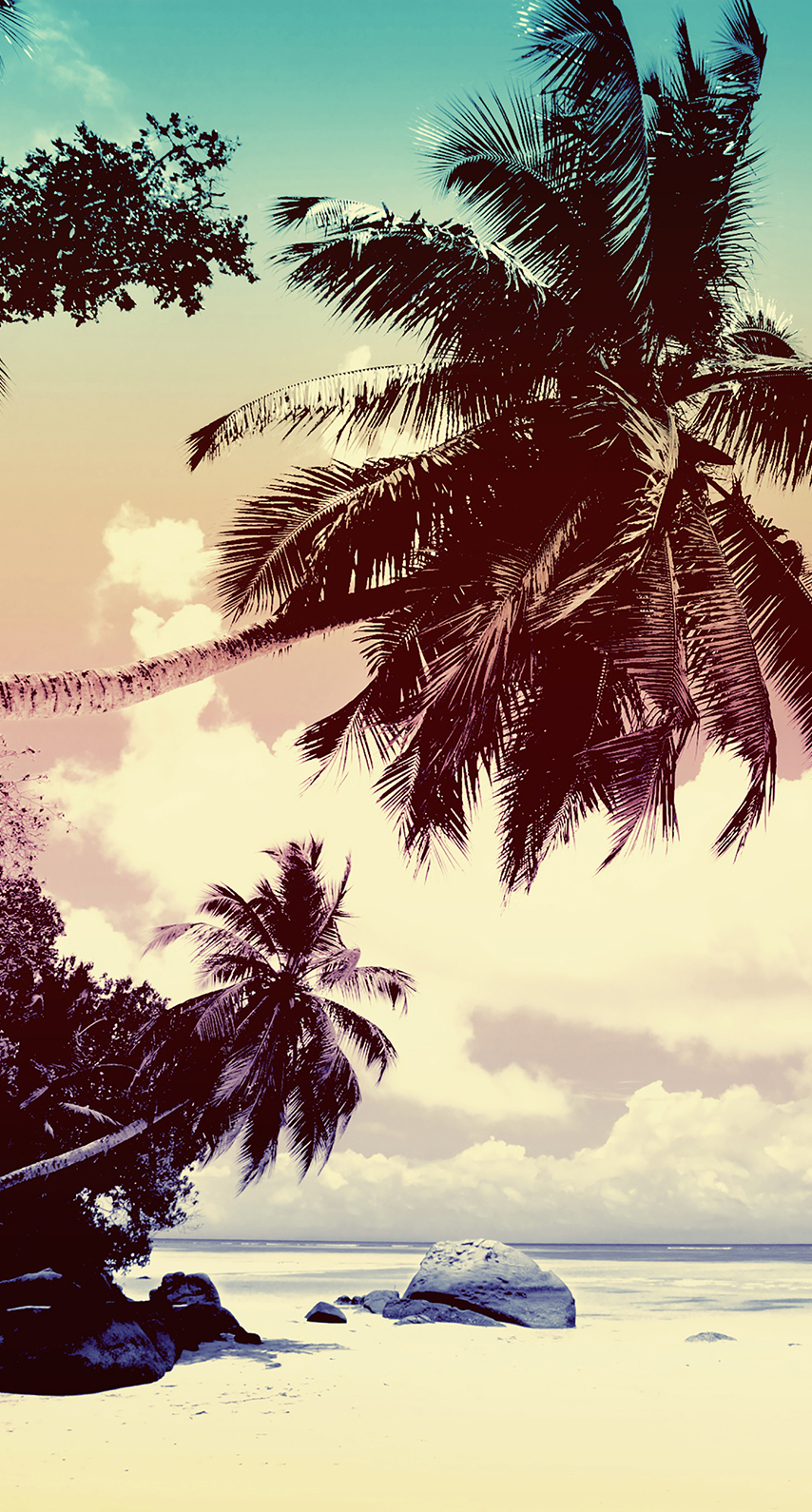 exotic, sand, sun, no person, idyllic, surf, seascape, palm, seashore, computer wallpaper, stock photography, calm, plant, tropics, palm tree, arecales