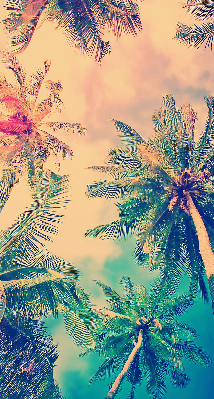 bright, tropical