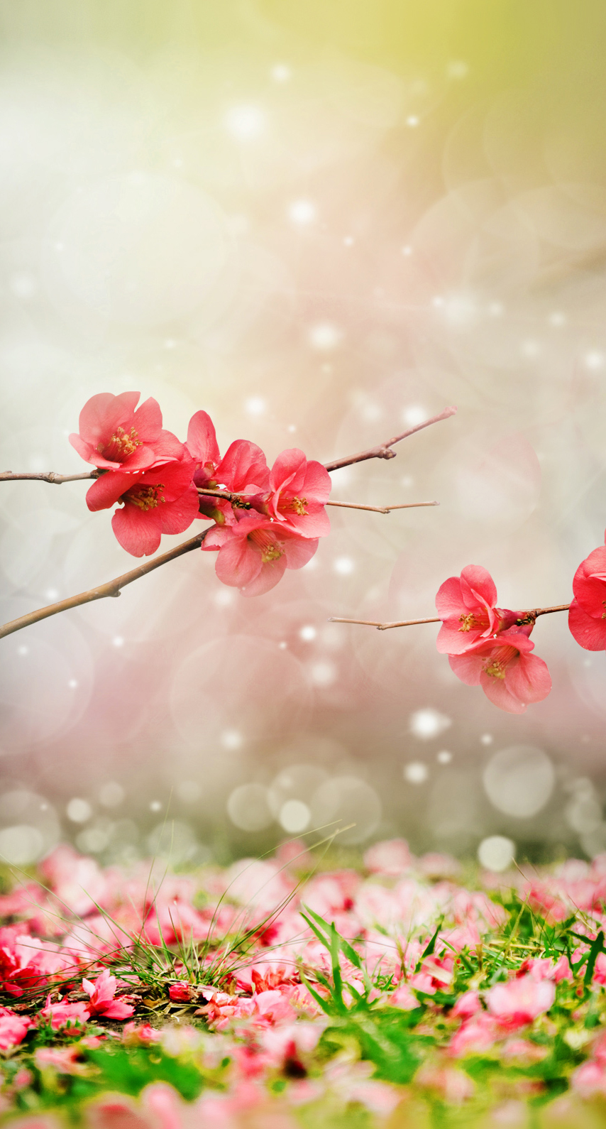 tree, branch, field, bright, fantasy, floral, celebration, art, summer, graphic, park