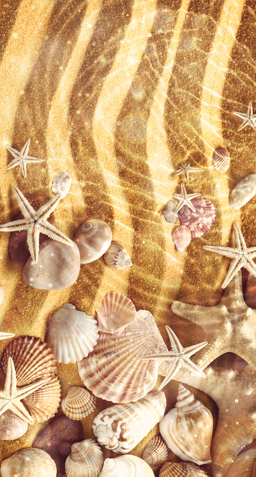 desktop, shape, no person, gold, shining, decoration, color, closeup, picture frame, seashell, shell