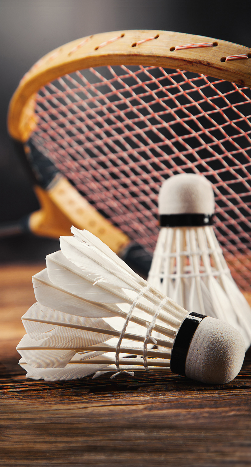 traditional, recreation, sport, leisure, gameplan (sports), participate, match, tennis, classic, racket
