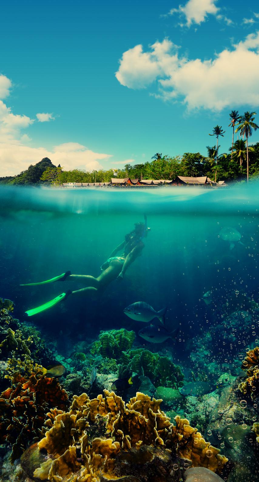 bay, tropical