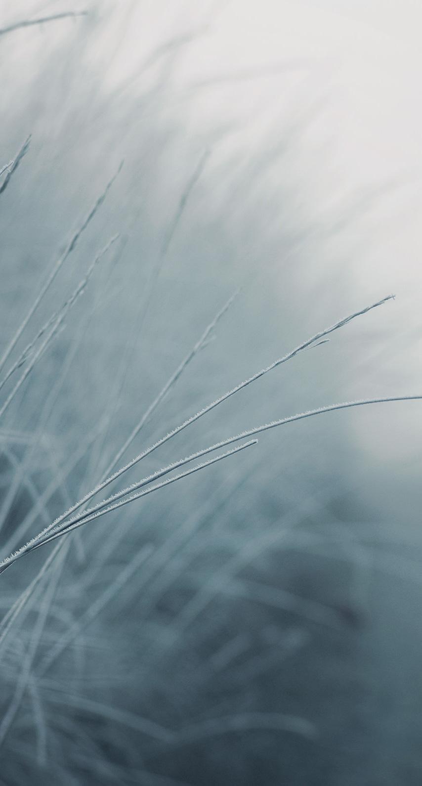 desktop, blur