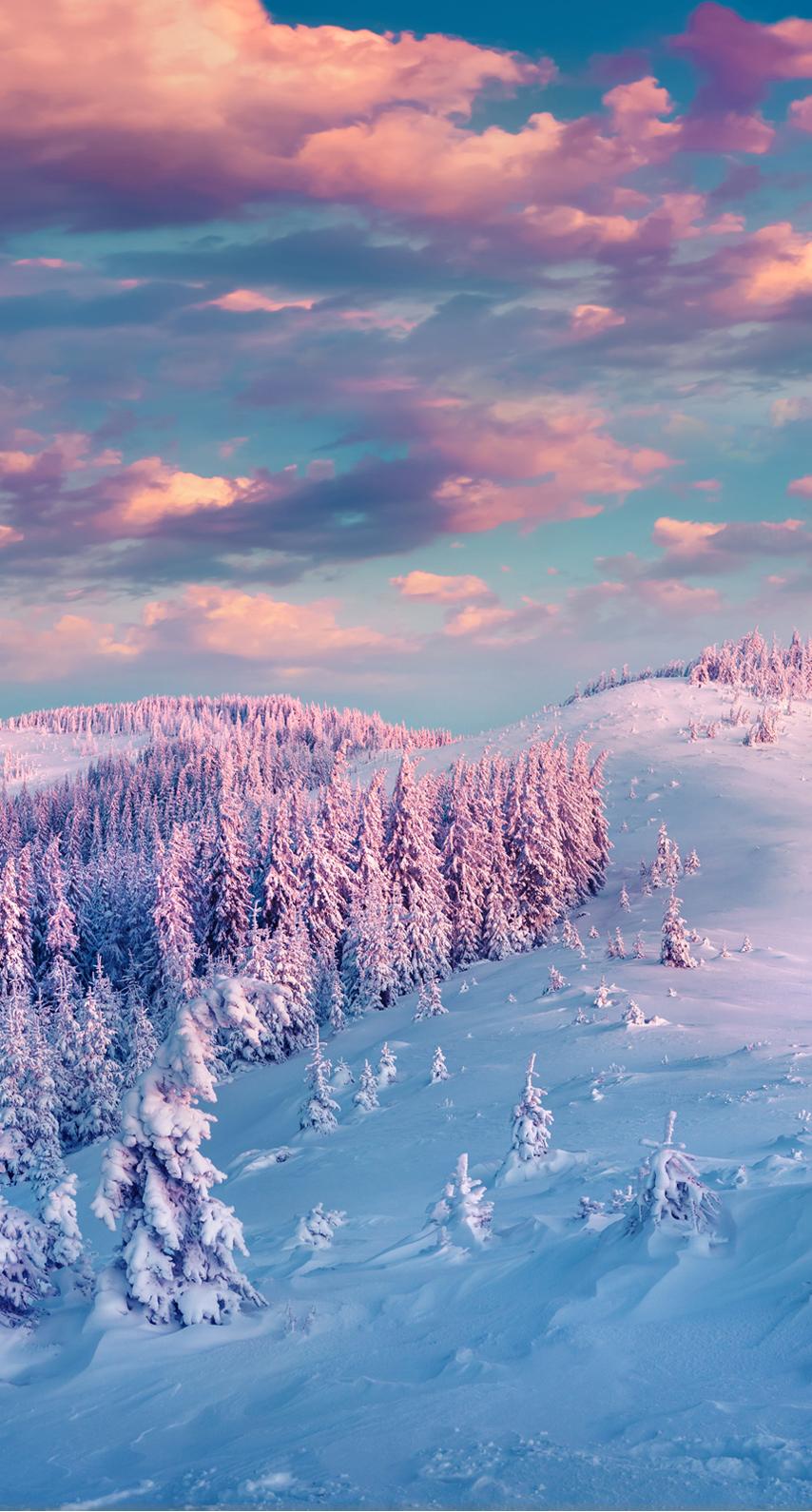 mountain peak, tundra