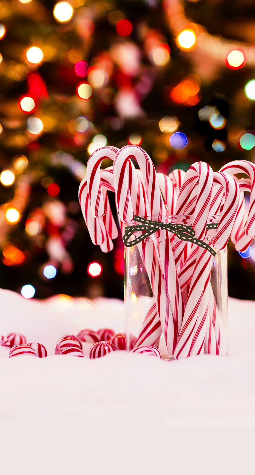 christmas, candy
