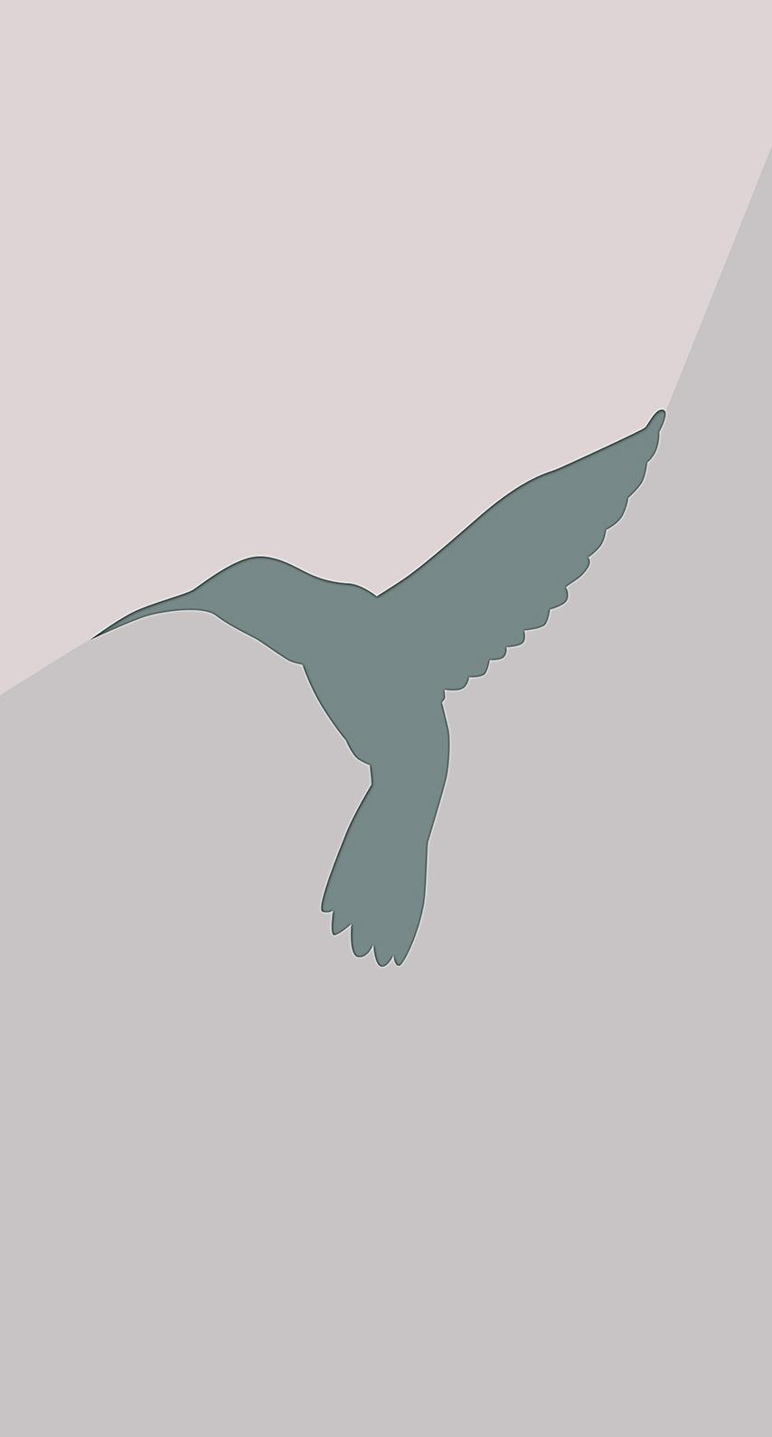 image, sign, disjunct, pigeon