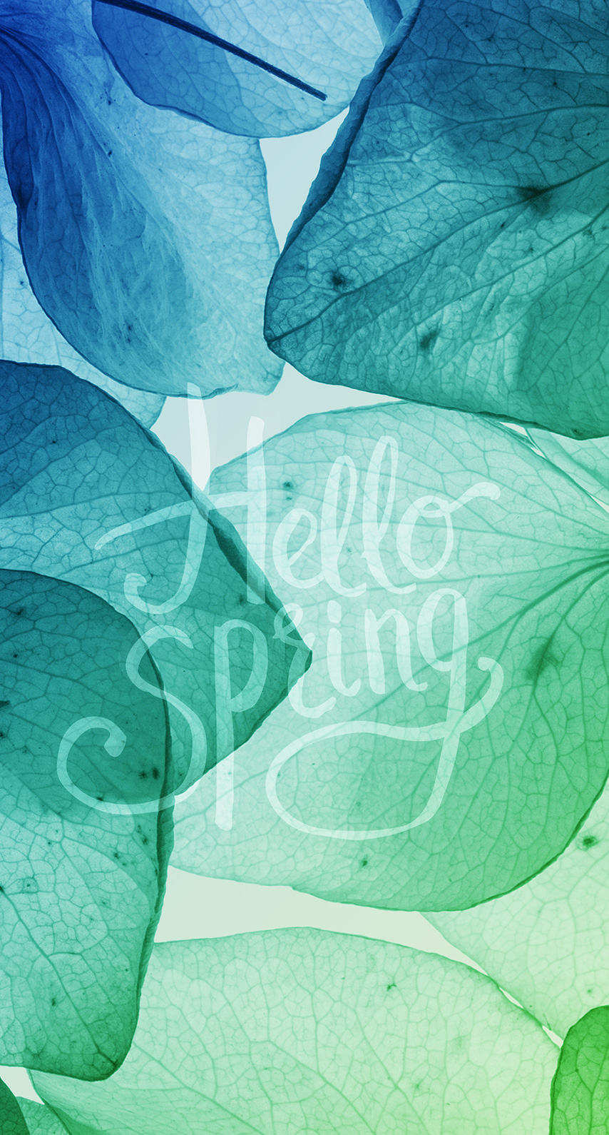 abstract, pattern, quote, bright, floral, spring, springtime, artistic