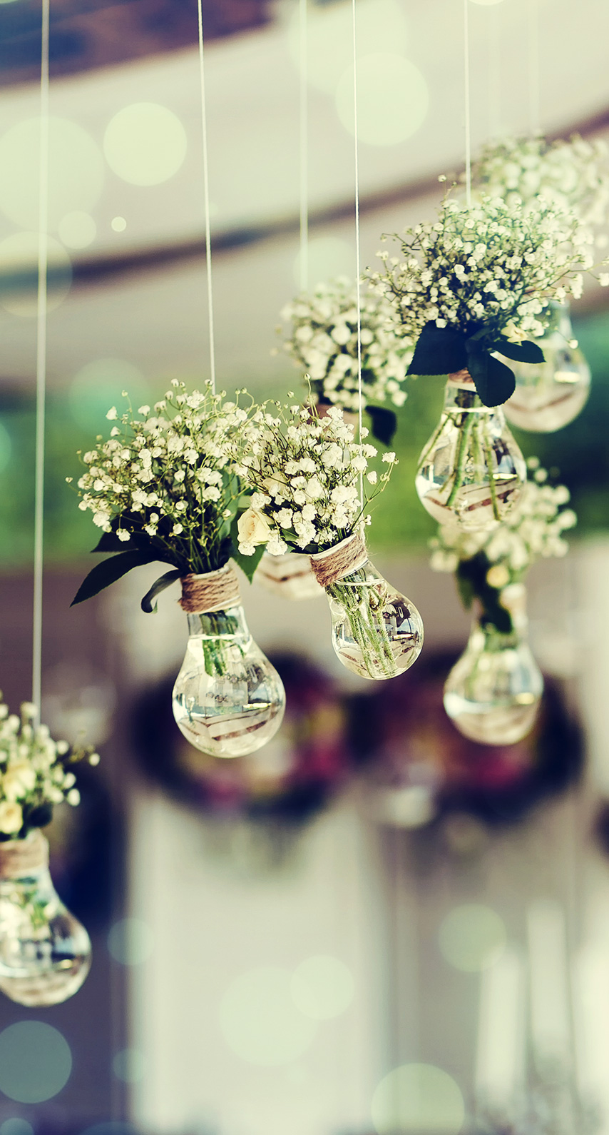 luxury, decoration, gift, color, reflection, flora, glass items, wedding, hanging, cluster