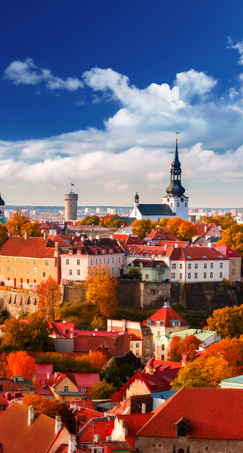 panoramic, tallinn, estonia, street, no person, people, outdoors, architecture, building, many, group, crowd, festival, tourism, town, tourist
