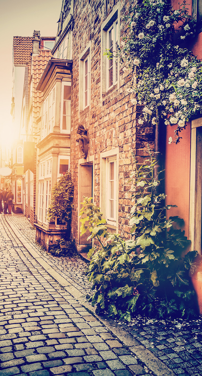 house, lamp, no person, old, outdoors, architecture, building, family, tourism, town, home, narrow, alley, pavement