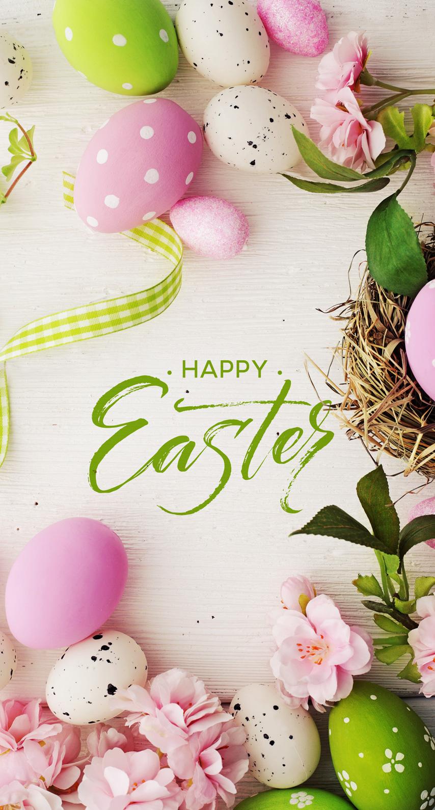 egg, greeting