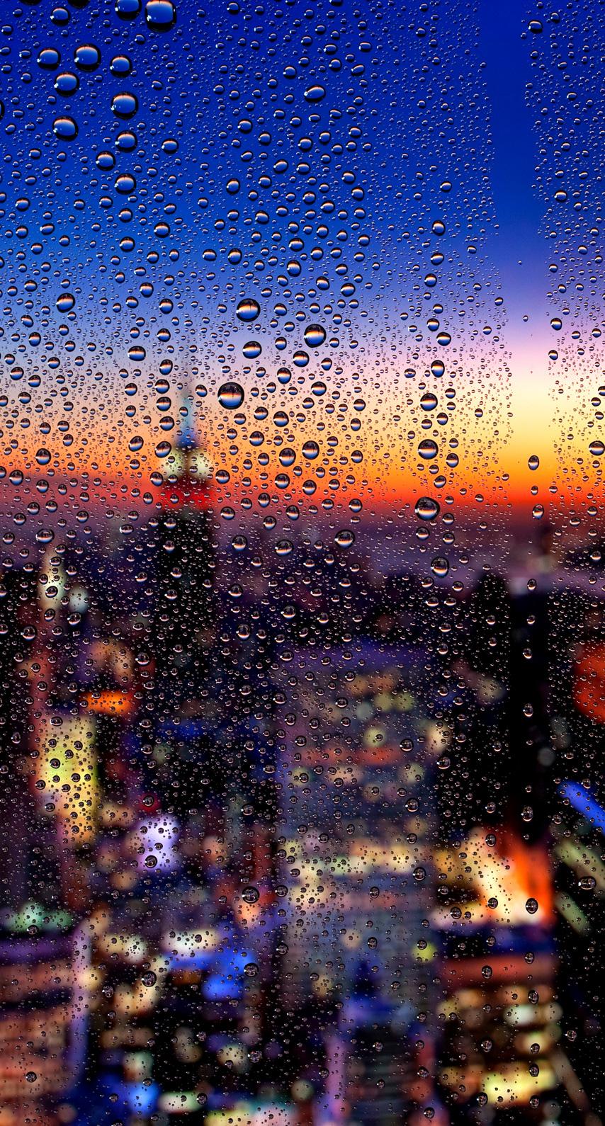drops, raindrops, rooftops, window