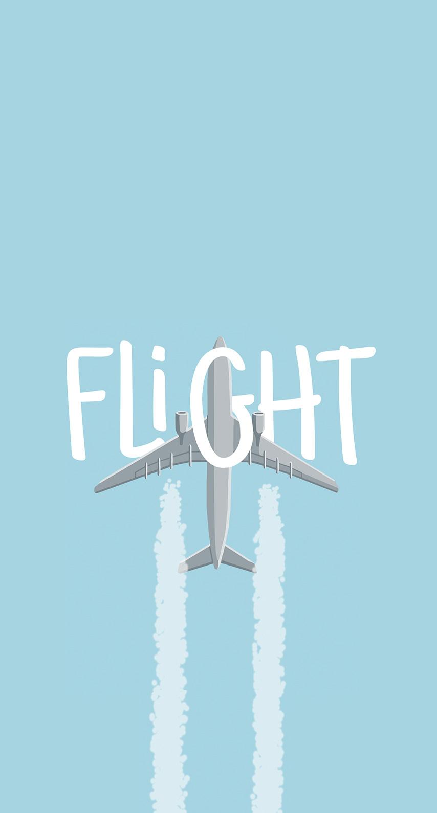 aircraft, flight