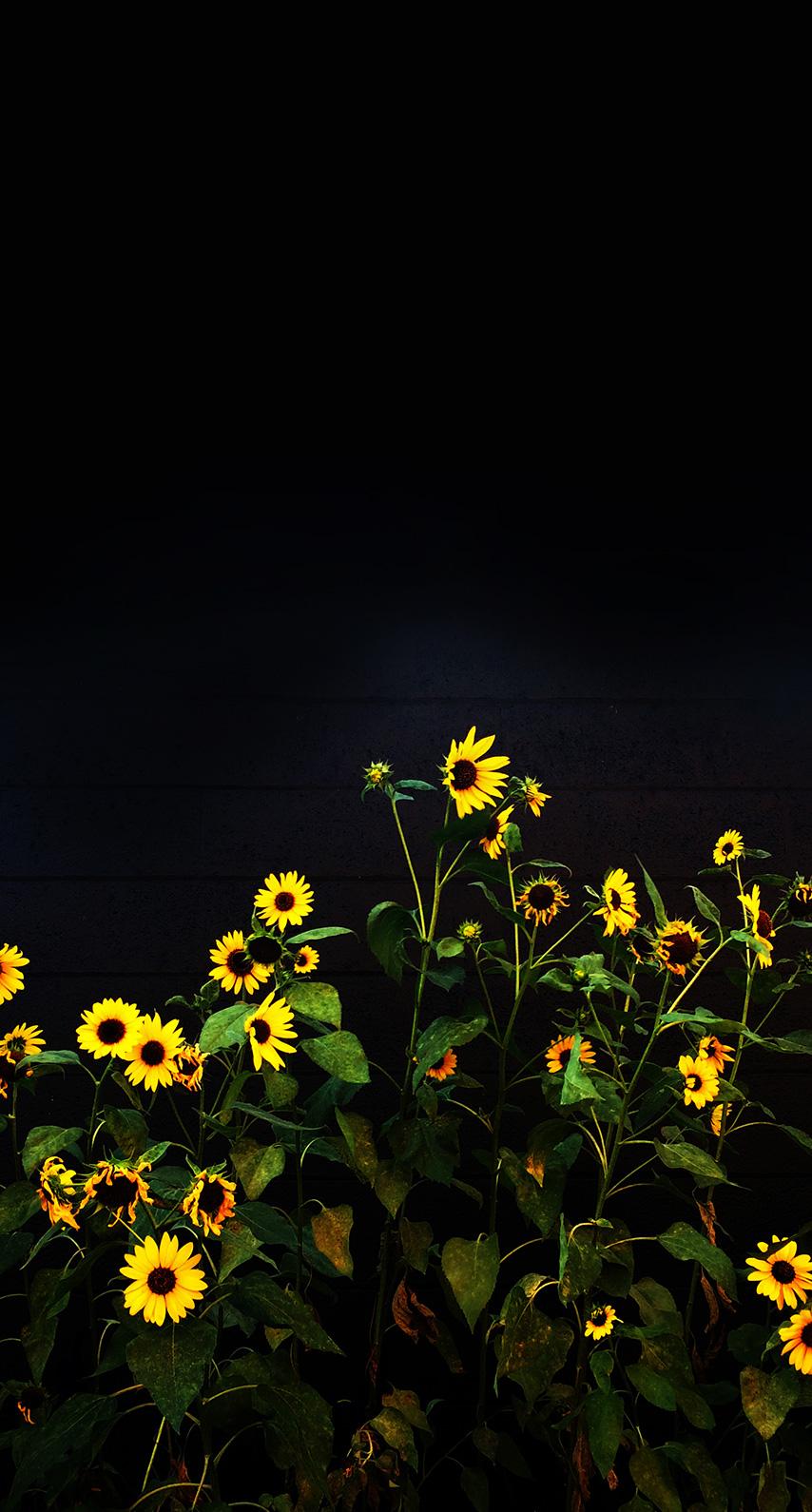 yellow, night
