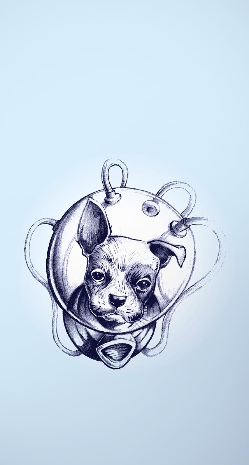 dog, puppy