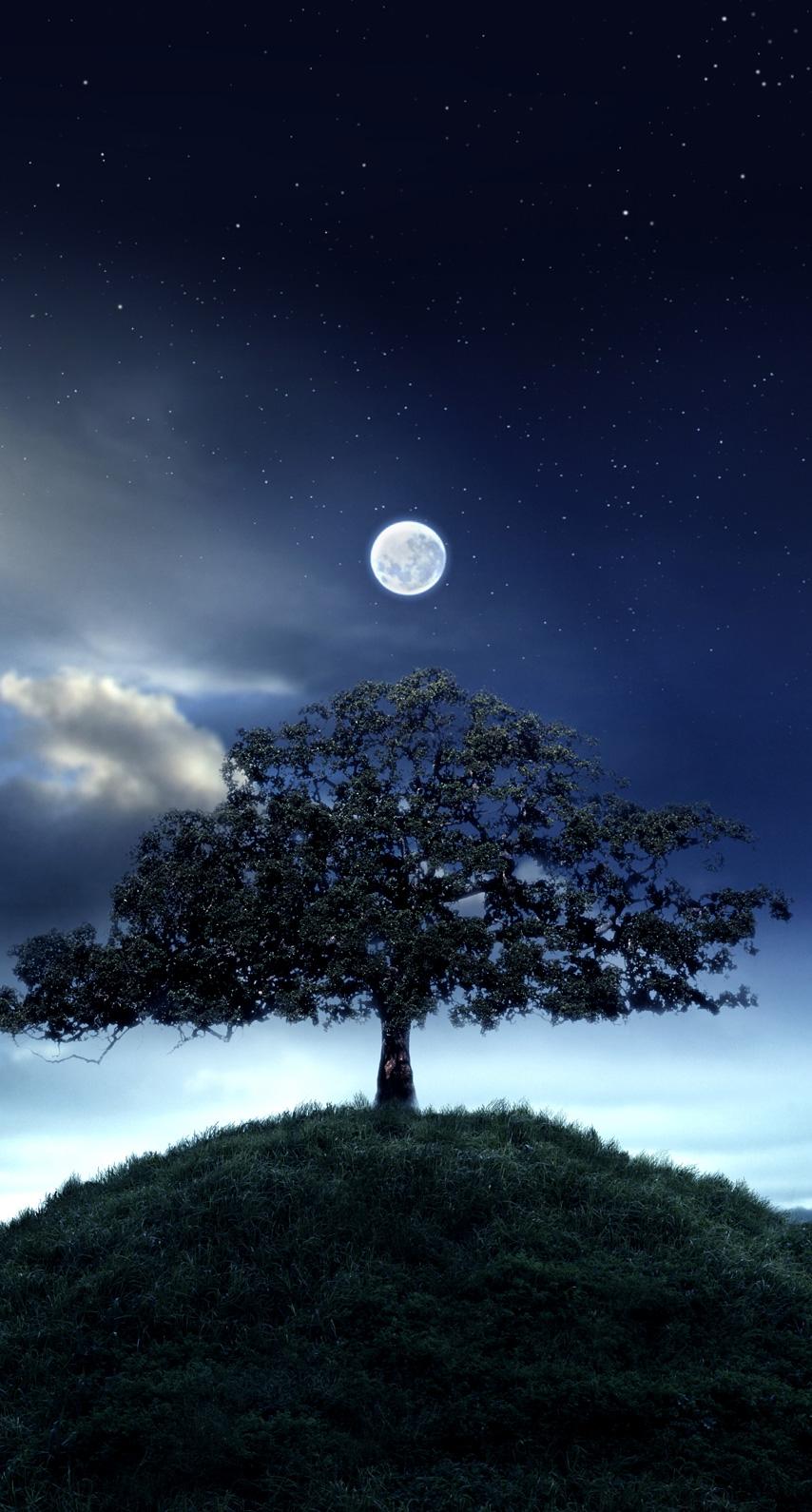 midnight, phenomenon