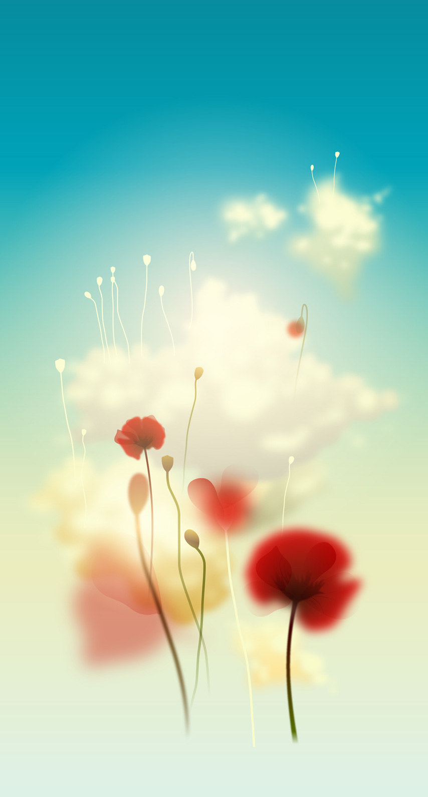 meadow, poppy