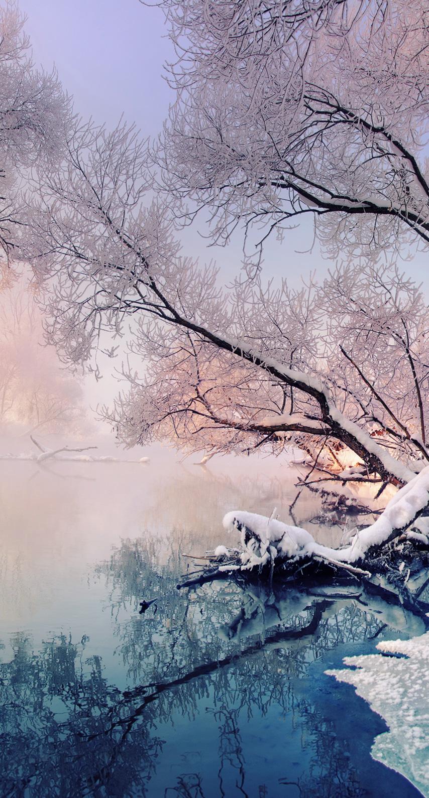 reflection, season