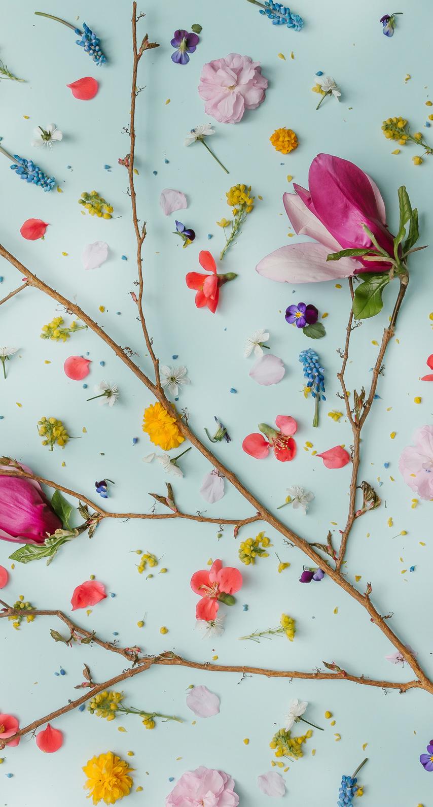 twig, floristry