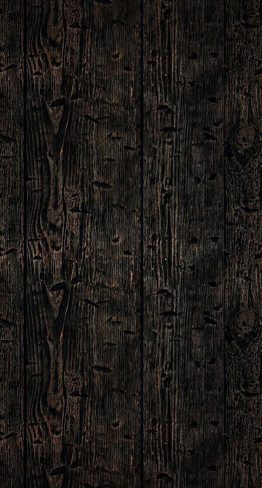 trunk, computer wallpaper