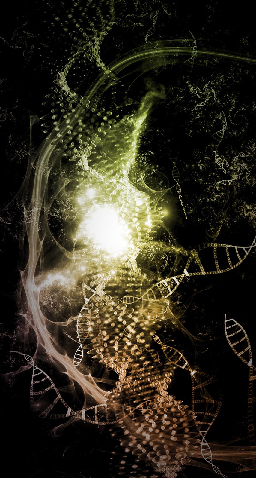 organism, lighting