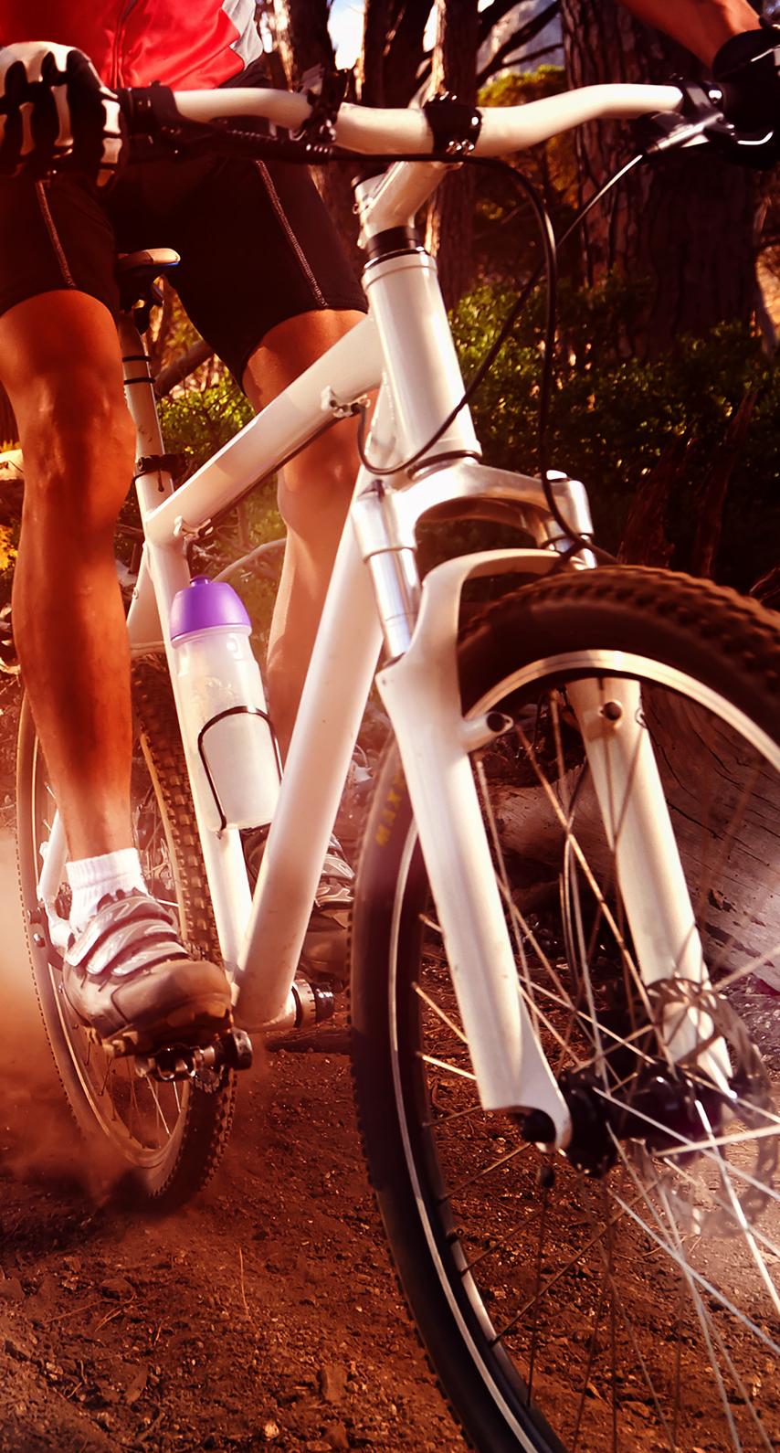 hybrid bicycle, mountain bike