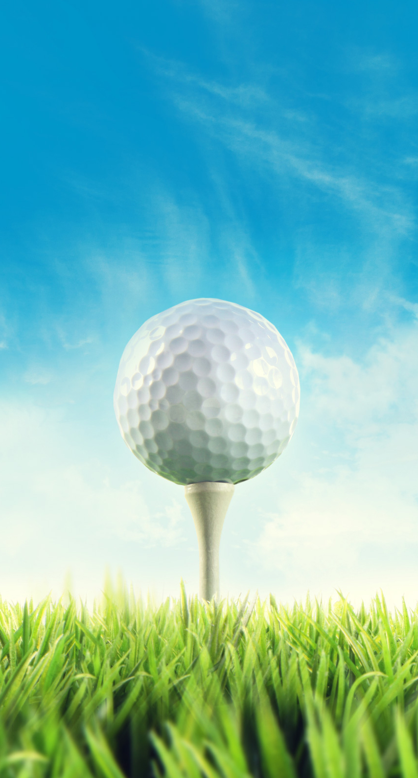 golf ball, golf equipment