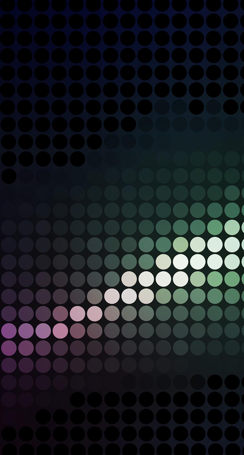 net, cover