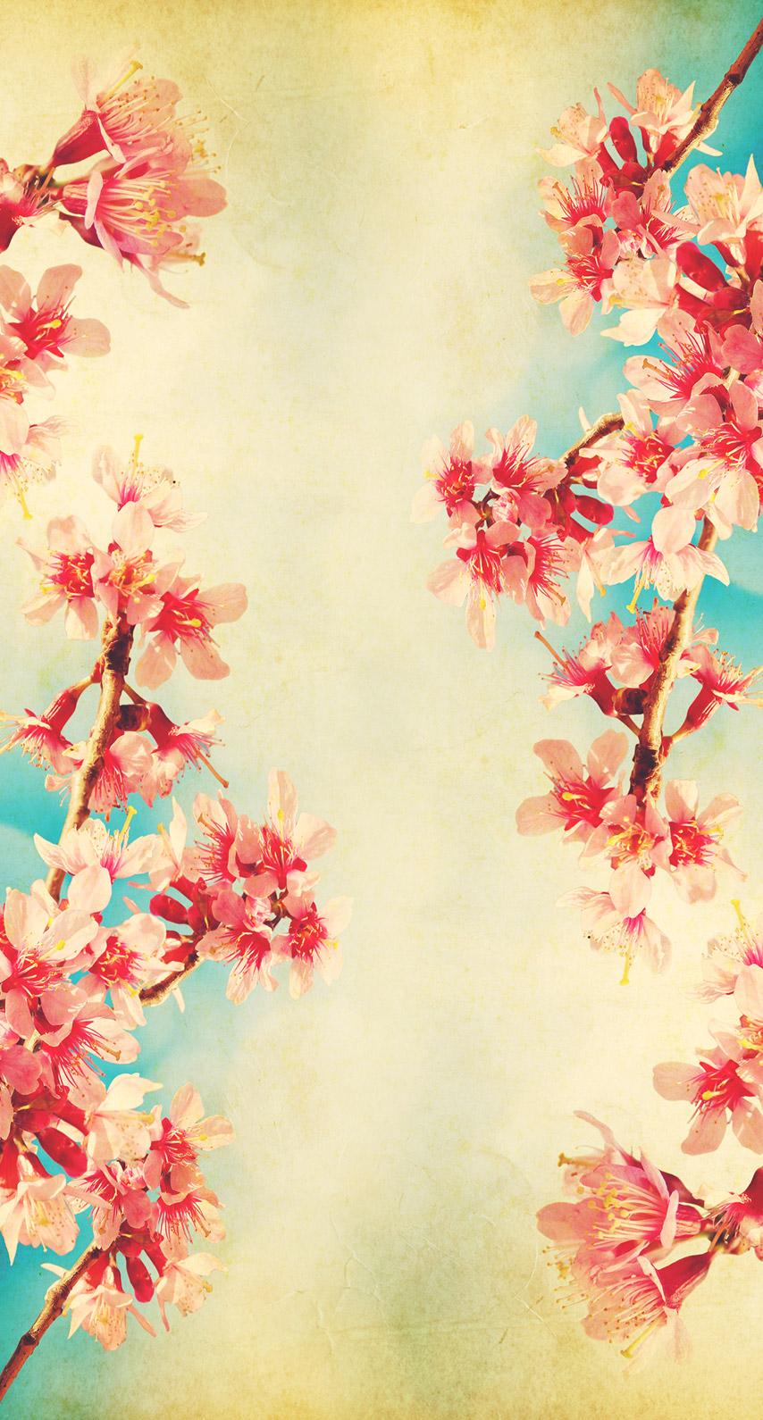 flower arranging, cherry blossom