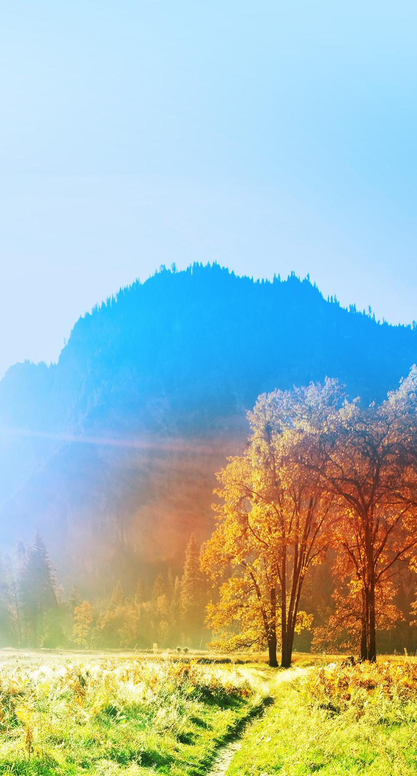 summer, mountain