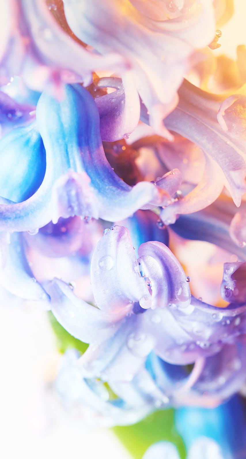 abstract, close-up