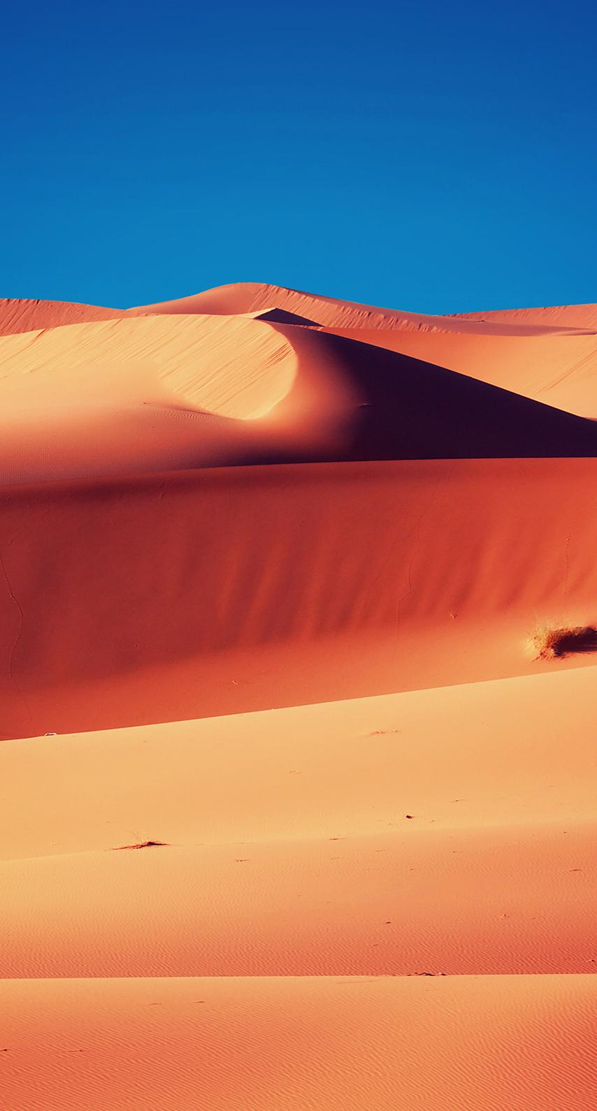 sand, sun