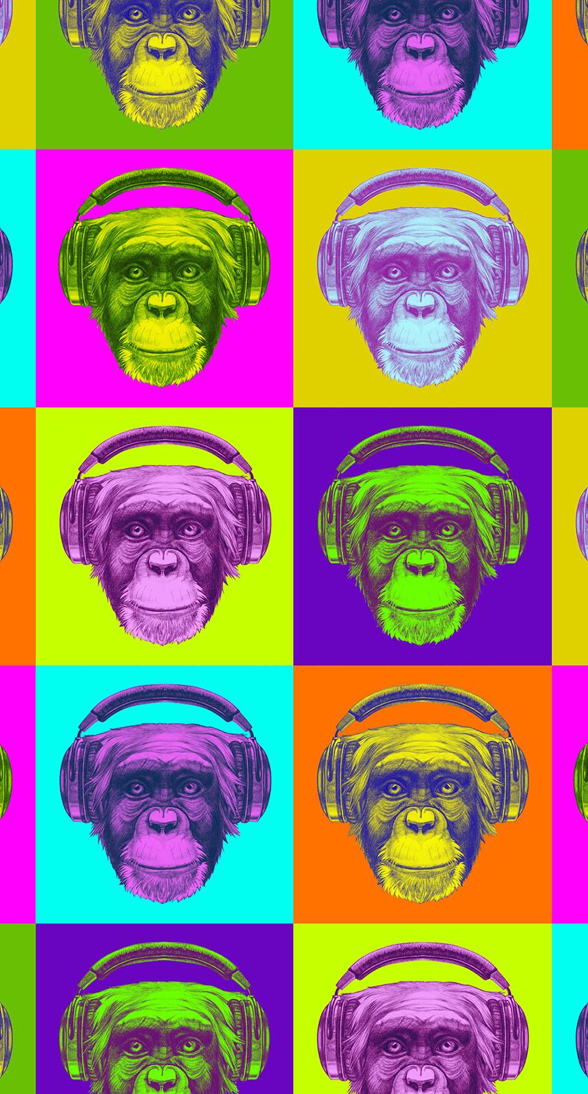 monkey, circle