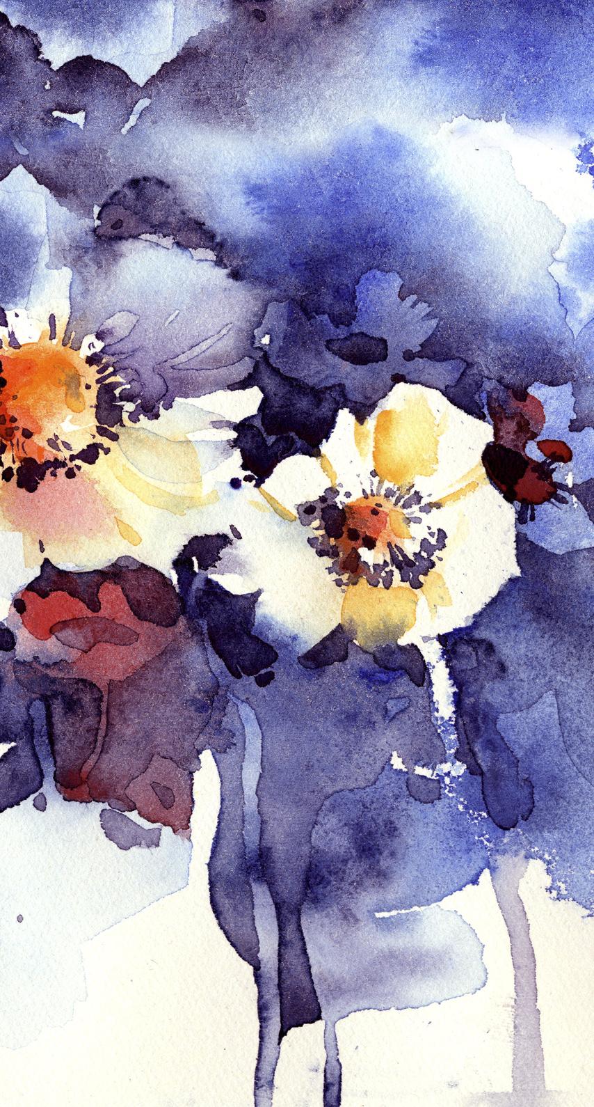 still life photography, flowering plant