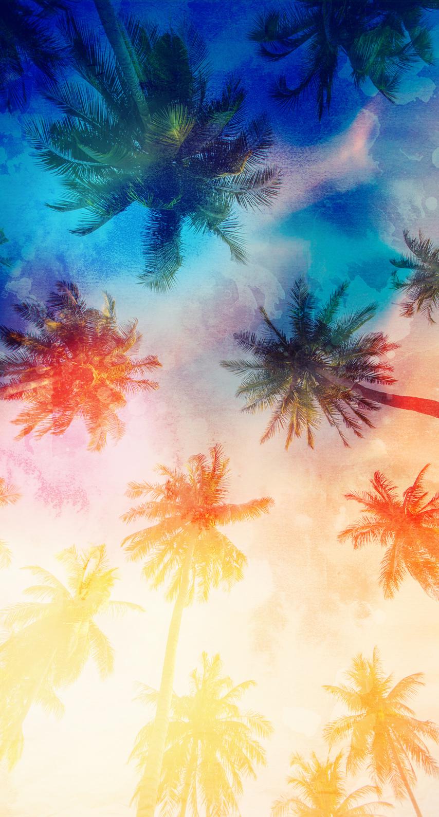 palmtrees, graphic