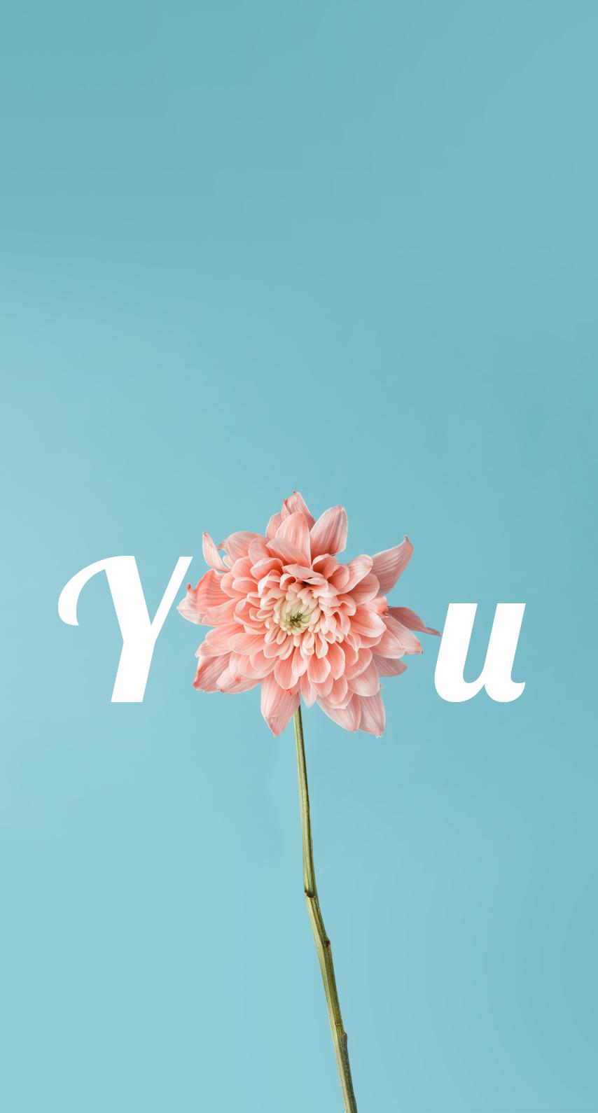 garden, petal