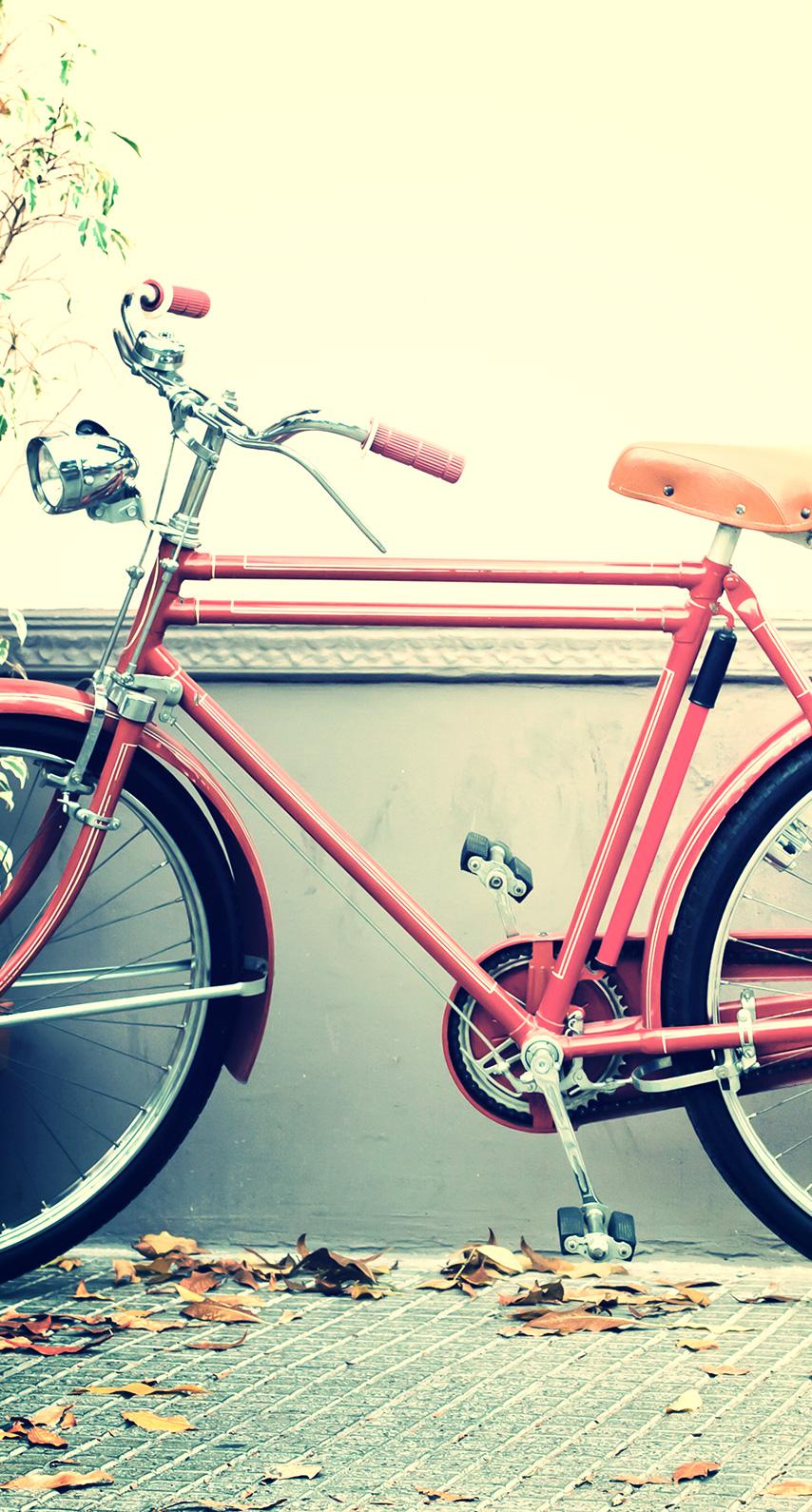 land vehicle, bicycle wheel