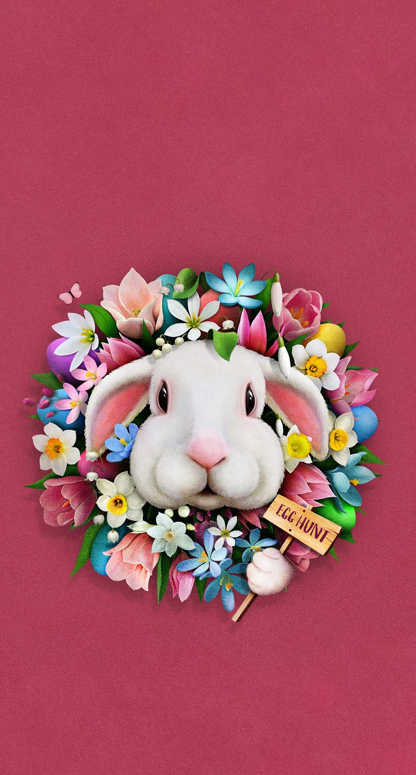 rabbit, bay