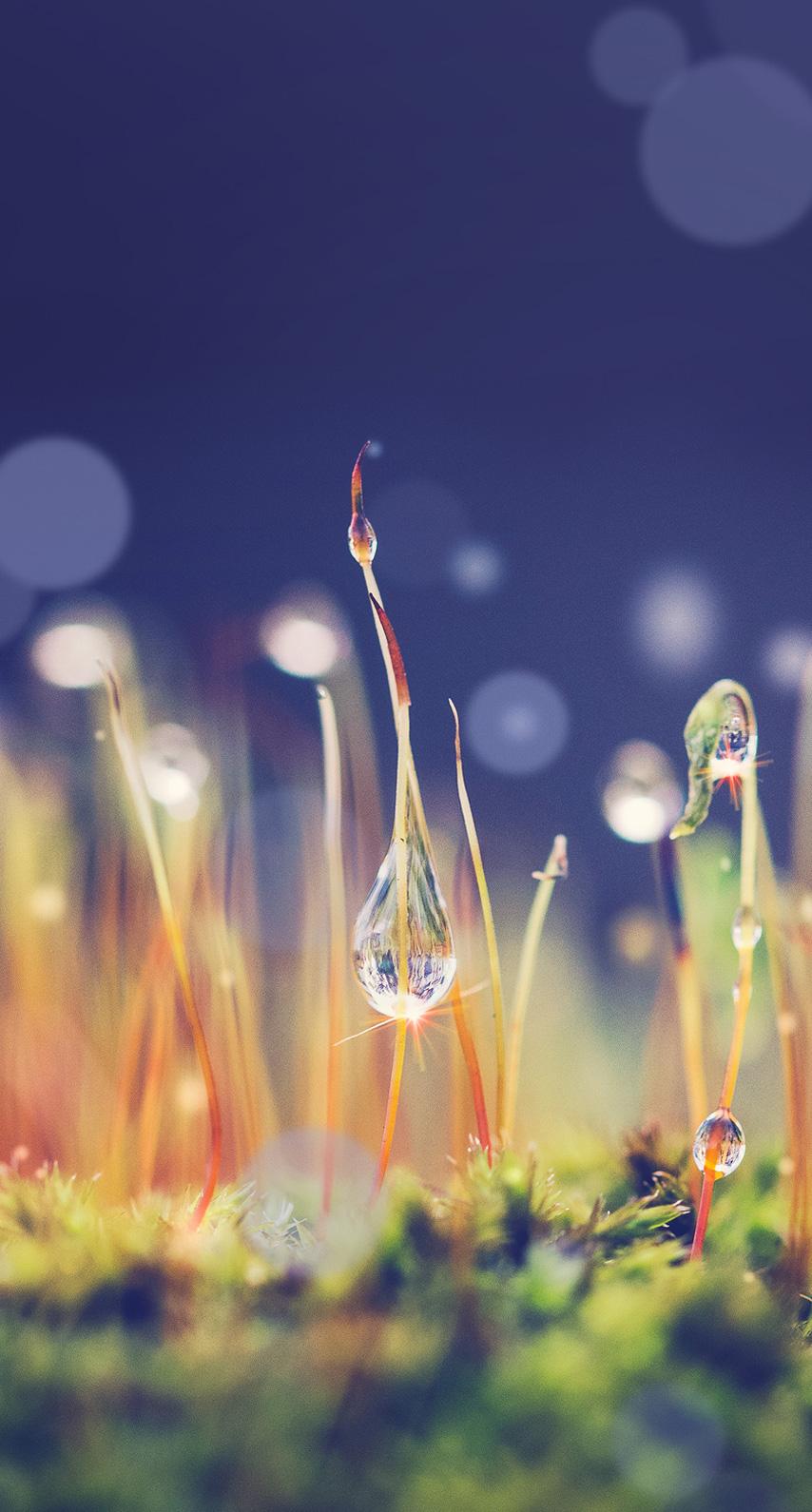 drop, abstract