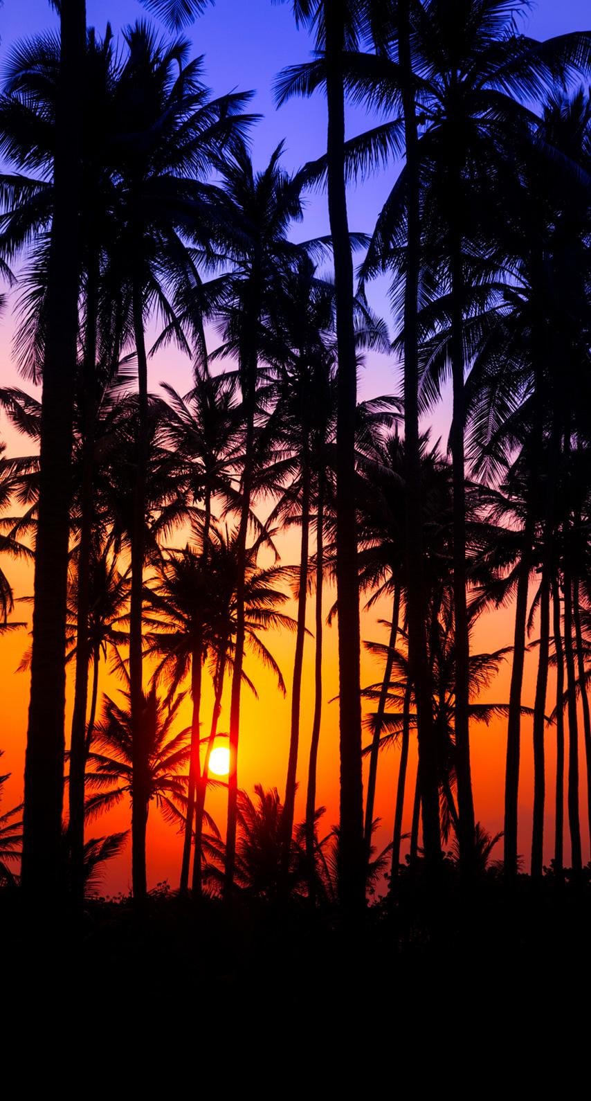 dawn, dusk