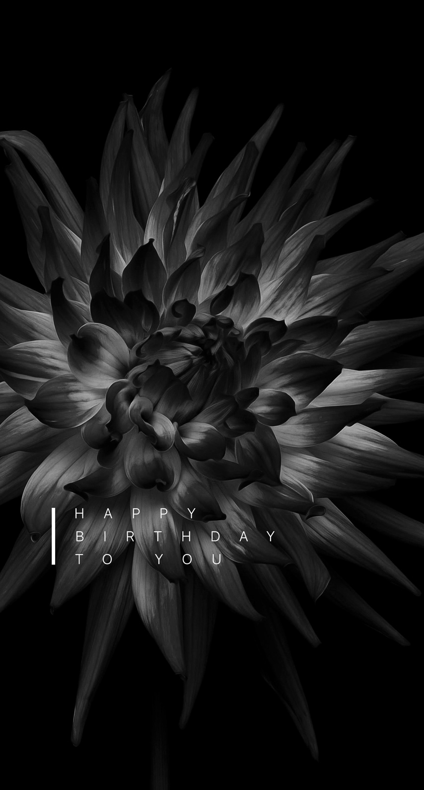 flora, blooming