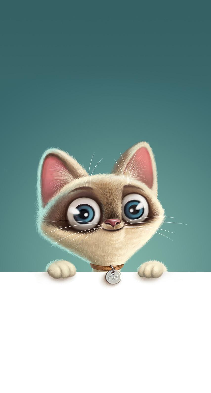 kitten, animal