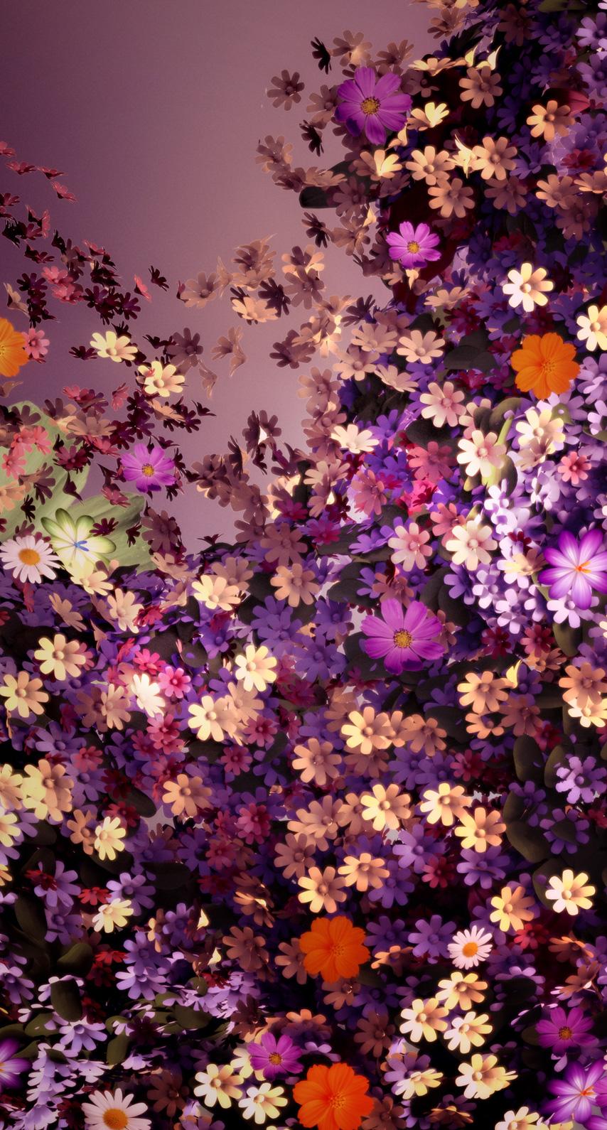 blooming, petal