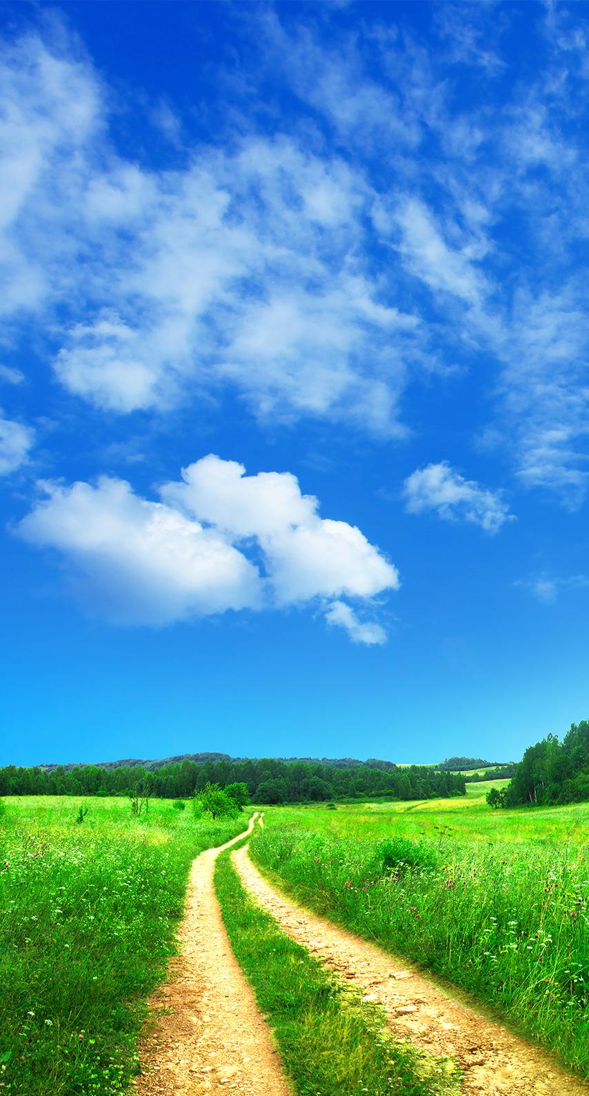 agriculture, pasture